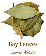 bay leaves liscie laurowe olympus life herbs and herbal teas ziola herbaty ziolowe