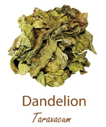 dandelion olympus life herbs and herbal teas ziola herbaty ziolowe