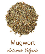 mugwort olympus life herbs and herbal teas ziola herbaty ziolowe