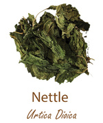 nettle olympus life herbs and herbal teas ziola herbaty ziolowe