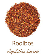 rooibos red bush tea olympus life herbs and herbal teas ziola herbaty ziolowe