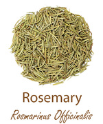 rosemary olympus life herbs and herbal teas ziola herbaty ziolowe