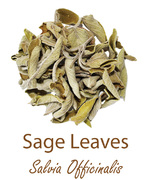 sage leaves szalwia olympus life herbs and herbal teas ziola herbaty ziolowe