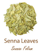 senna leaves olympus life herbs and herbal teas ziola herbaty ziolowe