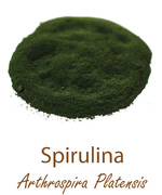 spirulina olympus life herbs and herbal teas ziola herbaty ziolowe