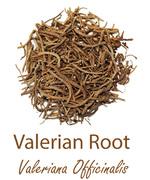 valerian root waleriana olympus life herbs and herbal teas ziola herbaty ziolowe