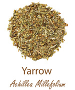 yarrow olympus life herbs and herbal teas ziola herbaty ziolowe